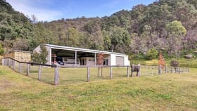 Rural / Farming commercial property for sale at 173 Bagnalls Creek Rd Paynes Crossing NSW 2325