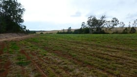 Rural / Farming commercial property for sale at 73 WHITEBRIDGE ROAD North Isis QLD 4660