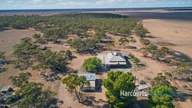 Rural / Farming commercial property for sale at 488 Liebigs Road Steinfeld SA 5356