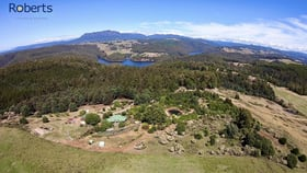 Rural / Farming commercial property for sale at 191 Goodland Road Wilmot TAS 7310