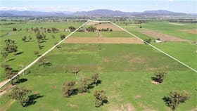 Rural / Farming commercial property for sale at 70 Netherton Road Dartbrook NSW 2336