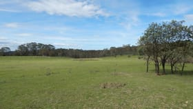 Rural / Farming commercial property for sale at Lots 119-125/127 Newline Road Glen Allen NSW 2631