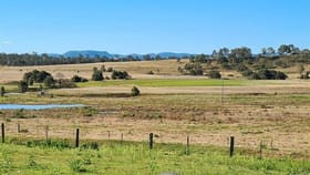 Rural / Farming commercial property for sale at 283 Cullendore Road Murrays Bridge QLD 4370
