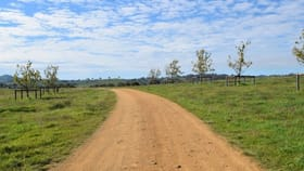 Rural / Farming commercial property for sale at 7 Kirkton Road Yass NSW 2582