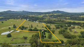 Rural / Farming commercial property for sale at 536 Wilson Road Congarinni North NSW 2447