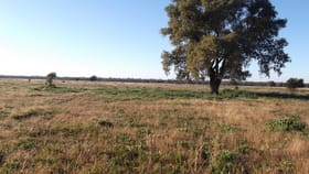 Rural / Farming commercial property for sale at 'Stansfield' 4836 The Bogan Way Tottenham NSW 2873