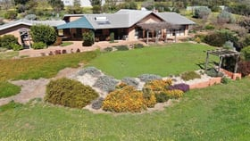 """Rural / Farming commercial property for sale at """"Gunggari"""" 597 Wantiool Road Junee NSW 2663"""