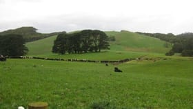 Rural / Farming commercial property for sale at 137 Ralstons Road Nabageena TAS 7330