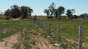 Rural / Farming commercial property for sale at 0 Tindall Rd Gracemere QLD 4702