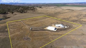 Rural / Farming commercial property for sale at 157 Lonsdale Road Sladevale QLD 4370