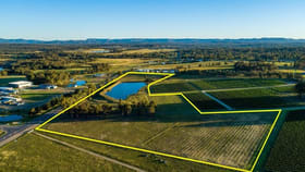 Rural / Farming commercial property for sale at 305 Wine Country Drive Nulkaba NSW 2325