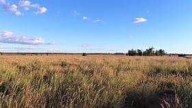 Rural / Farming commercial property sold at 317 Nindinna Road Roma QLD 4455