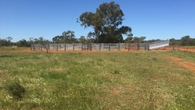 Rural / Farming commercial property for sale at . Illewong Euabalong NSW 2877