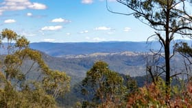 Rural / Farming commercial property for sale at 'Wilds' Enfield Range Road Cells River NSW 2424