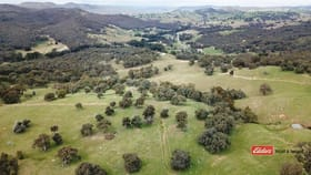 Rural / Farming commercial property for sale at Tuena NSW 2583