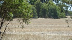 Rural / Farming commercial property for sale at Lot 260 Old Deniliquin Road Moama NSW 2731