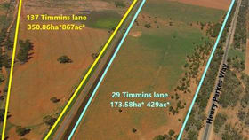 Rural / Farming commercial property for sale at 29 & 137 Timmins Lane Condobolin NSW 2877