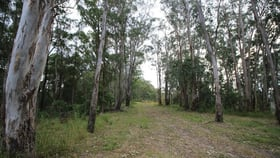 Rural / Farming commercial property for sale at Lot 178 The Old Coach Rd Lorne NSW 2439