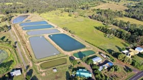 Rural / Farming commercial property for sale at 212 North Isis  Road North Isis QLD 4660