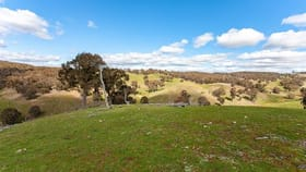 Rural / Farming commercial property for sale at Taralga NSW 2580