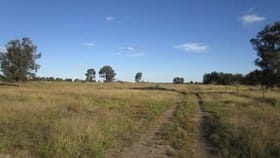 Rural / Farming commercial property sold at Lot 4 GAZZARDS ROAD Tara QLD 4421