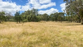 Rural / Farming commercial property for sale at 3620 Yetman Road Inverell NSW 2360