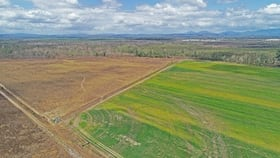 Rural / Farming commercial property for sale at Mareeba QLD 4880