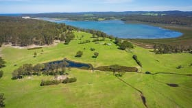 Rural / Farming commercial property for sale at 149 Wapengo Lake Road Wapengo NSW 2550