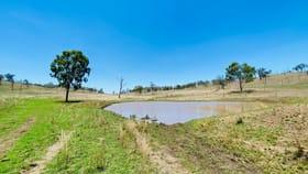 Rural / Farming commercial property for sale at 137, 63 Seibenhausen Road Goomeri QLD 4601