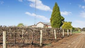 Rural / Farming commercial property for sale at 29 DeFontenay Road Barmera SA 5345