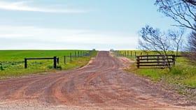 Rural / Farming commercial property for sale at 514 BARK HUT ROAD Cassini SA 5223