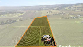 Rural / Farming commercial property for sale at 87 Almond Grove Road Whites Valley SA 5172