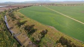 Rural / Farming commercial property for sale at 344 Masmans Road Gunnedah NSW 2380