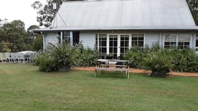 Rural / Farming commercial property for sale at 333 Palmers Lane Pokolbin NSW 2320