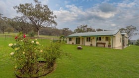 Rural / Farming commercial property for sale at 97 Pecks Road Molong NSW 2866