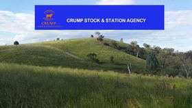 Rural / Farming commercial property for sale at 391 Kellys Access Road Bingara NSW 2404