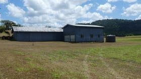Rural / Farming commercial property for sale at Walter Lever Estate QLD 4856