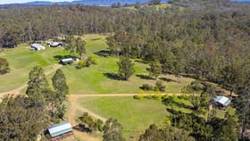 Rural / Farming commercial property for sale at 234 Tuckers Lane North Rothbury NSW 2335