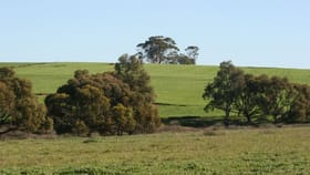 Rural / Farming commercial property for sale at Grass Valley WA 6403