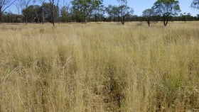 Rural / Farming commercial property for sale at 'OUIDA' 9142 Adavale Road Langlo QLD 4470