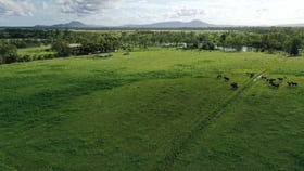 Rural / Farming commercial property for sale at 512 Tondara Road Guthalungra QLD 4805