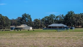 Rural / Farming commercial property for sale at 182 Drip Lane Mudgee NSW 2850