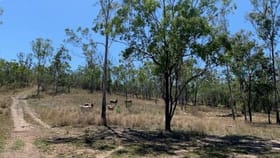 Rural / Farming commercial property for sale at Lots 60 & 61 Neil Creek Road Calliope QLD 4680