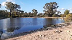 Rural / Farming commercial property for sale at 15 & 16 Carlisle Road Fifield NSW 2875