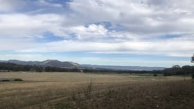 Rural / Farming commercial property sold at 603 Black Springs Road Mudgee NSW 2850