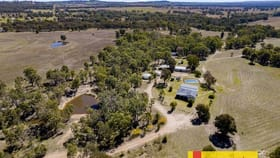 Rural / Farming commercial property for sale at 405 Lowes Peak Road Mudgee NSW 2850