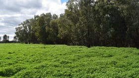 Rural / Farming commercial property sold at Bullock Paddock  The Escort Way Forbes NSW 2871