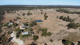 Rural / Farming commercial property for sale at 13 McKnights Road Chinchilla QLD 4413