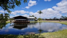 Rural / Farming commercial property for sale at 568 McGrath Road Mareeba QLD 4880