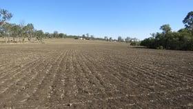 Rural / Farming commercial property for sale at 2180 Kingaroy Barkers Creek Road Nanango QLD 4615